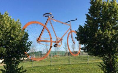 Cyklisto, sesedni zkola!